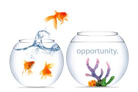 WHAT IS OPPORTUNITY?